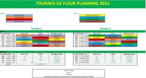 TDF planning 2015